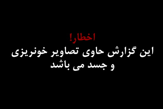 تلگرام با زبان فارسی