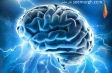 مطالعات محققان آمریکایی نشان می دهد پیاده روی منظم و مداوم در تقویت حافظه نقش قابل ملاحظه ای دارد. بر اساس این تحقیق 40 دقیقه پیاده روی آرام به میزان سه بار در هفته می تواند موجب افزایش اندازه غده هیپوکامپ (کنترل کننده حافظه و خاطرات) در مغز شود و عملکرد ذهنی را حتی با بالا رفتن سن، بهبود بخشد.