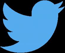 توییتر سرانجام توانست پس از ۱۲ سال به سوددهی برسد به گونهای که در سه ماهه پایانی سال ۲۰۱۷ میلادی موفق شد ۷۳۲ میلیون دلار کسب کند.
