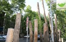 عضو شورای شهر تهران گفت: متاسفانه طی هفتههای گذشته شاهد قطع بین ۸۰ تا ۲۰۰ اصله درخت در مجتمع پلیس در منطقه ۱۶ بودهایم.
