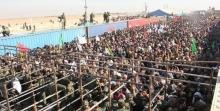 دبیر ستاد مرکزی اربعین با اشاره به افزایش تردد زائران در مرزها اظهار داشت: در سمت ایران مشکلی برای خروج زائران وجود ندارد، اما در مرزهای شلمچه، چذابه و تا حدی در مرز مهران مشکل حمل و نقل زائران در خاک عراق را داریم.