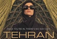 در این سریال موساد بدنبال از کار انداختن برنامه اتمی ایران از طریق هک کامپیوتری است و برای این کار یک مأمور زن جوان را که «ریشه ایرانی» دارد، به تهران اعزام میکند