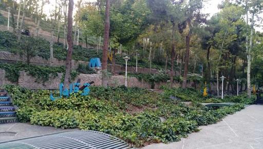 تهران شهری است که روز به روز، تعداد جاذبه های گردشگری آن در حال افزایش است. در واقع این شهر، دارای جمعیت بسیار زیادی می باشد، و هوای این شهر، در بیشتر روزها ناسالم است. تراکم ماشین ها و همچنین ترافیک گسترده در شهر، همه و همه سبب شده تا روزانه، میزان آلودگی شهر بیشتر شود. به همین سبب، شهرداری این شهر، در راستای کاهش آلودگی هوا و همچنین افزایش جاذبه های گردشگری شهر، اقدام به ایجاد فضای سبز به طور گسترده در سطح شهر کرد. در نتیجه، پارک ها و بوستان های بسیاری، از جمله پارک ساعی، در این شهر تاسیس شد که هر کدام از آن ها، زیبایی خاص خود را دارند و برای گشت و گذار، گزینه خوبی هستند.