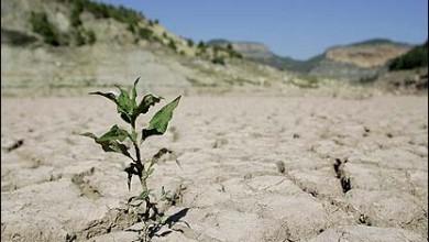 از طرفی مسئولان کشو تأکید می کنند که مشکل کم آبی و بحران قحطی آب و خشکسالی در راه است و یکی از راه حل های کنترل این بحران مهار جمعیت مصرف کننده آب است، از طرف دیگر کارشناسان گزارش می دهند نرخ رشد جمعیت کشور به مرحله هشدار رسیده است و برای جلوگیری از آسیب های احتمالی از چنین خطری همین امروز باید برنامه ریزی و سیاست گذاری شود که فردا خیلی دیر خواهد بود.