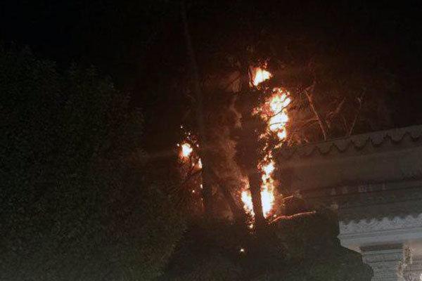 سخنگوی آتش نشانی شهرداری تهران از مهار آتش سوزی «توچال» خبر داد.