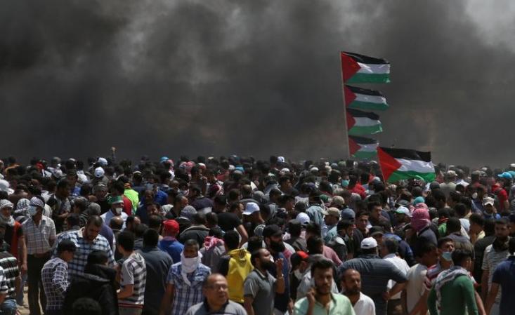.از روز گذشته تا امروز صفحات شبکه های مجازی سلبریتی های ایرانی بدون کوچکترین واکنشی نسبت به ماجرای فلسطین خاموش مانده اند. سلبریتی های ایرانی در سالهای اخیر به این مشهور شده اند که درباره هر اتفاق سیاسی، اجتماعی، اقتصادی، فرهنگی و... که در دنیا رخ می دهد، اظهارنظر می کنند.حجم بالای این اظهارنظرها و واکنش سلبریتی ها به هر اتفاق ریز و درشتی در جامعه، در ماه های اخیر با واکنش های مختلفی روبرو شده است.
