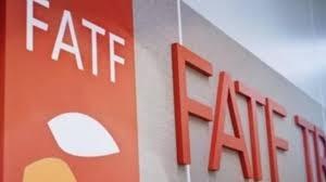 در حالیکه حامیان FATF ادعا می کنند که استانداردهای این نهاد بین الدولی مورد قبول همه کشورهای جهان است، اقدامات اروپا در انتشار لیست جداگانه پولشویی و تلاش برای تاسیس نهاد مستقل مبارزه با پولشویی نشان می دهد که مرجعیت FATF در موضوع پولشویی محل ابهام است.