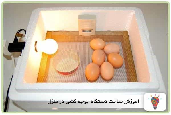 جوجه کشی از تخم های نطفه دار فرایندی بسیار جذاب و هیجان انگیز میباشد. در این نوشته قصد داریم آموزش ساده ساخت دستگاه جوجه کشی در منزل را به شما یاد دهیم. وسایل مورد استفاده در ساخت این دستگاه تقریبا در همه منازل یافت میشود. سایر وسایل را می توانید با هزینه اندک از فروشگاه های مربوطه تهیه کنید.